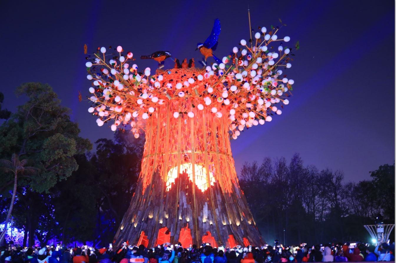 2020台灣燈會開燈  主燈「森生守護-光之樹」璀璨台中夜空