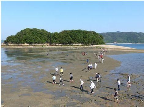 日本唯一愛媛甘崎城分海遺跡城堡